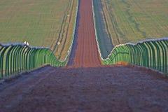 Pista para todo clima del entrenamiento del caballo con las barreras cada lado Imagen de archivo