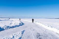 Pista pattinante di giro sul lago Nasijarvi immagini stock libere da diritti
