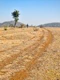 Pista polverosa in regione selvaggia Fotografia Stock Libera da Diritti