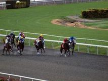 Pista redonda de la carrera de caballos como el campo de caballos Fotos de archivo