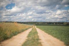 Pista rural del camino de tierra en el centro imagen de archivo libre de regalías