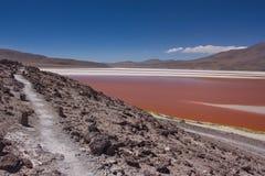 Pista sulla banca di una laguna di Colorado in Bolivia Immagini Stock