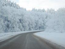 Pista vacía en el bosque en las montañas en invierno nevoso hermoso fotos de archivo