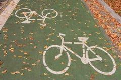 Pista verde de la bicicleta fotografía de archivo libre de regalías