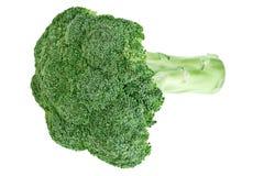 Pista verde fresca de la col del bróculi con el tallo Fotos de archivo libres de regalías