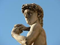 Pista y hombros de David Imagen de archivo libre de regalías