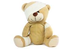 Pista y ojo vendados del oso Foto de archivo libre de regalías