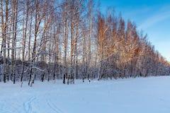 Pista y sendero del esquí en las cercanías de la ciudad fotos de archivo