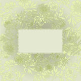 Pistachio floral background Royalty Free Stock Photography