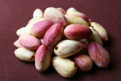 PISTACHIO NUT Royalty Free Stock Image