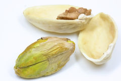 Pistachio nut. Close up of a single pistachio nut Stock Photos
