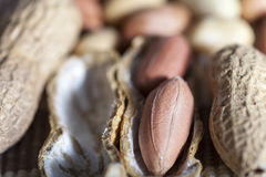 Pistachio nut Stock Images
