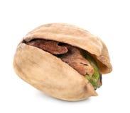 Pistachio nut. Tasty snack pistachio nut isolated on white background Royalty Free Stock Images