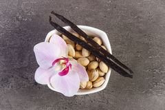 Pistachio nuts, blooming orchid and fragrant vanilla sticks, cosmetic ingredients Stock Photography