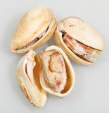 Pistachio nuts close up Stock Images