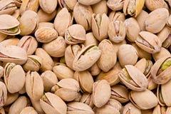 Pistachio Nuts (Pistacia vera) Stock Image