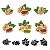 Pistachio nuts set. Vector Stock Photography