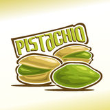 Pistachio nuts. Vector illustration on the theme of the logo for pistachio nuts, consisting of three nutlets, one of which peeled and the other two in the Royalty Free Stock Photos