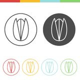Pistachio vector icons. Vector set of pistachio icons in thin line style Royalty Free Stock Image
