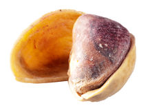 Pistachio on white background. Macro Stock Images