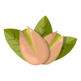 Pistachios colorful icon stock illustration