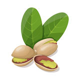 Pistachios with leafs  on white. Royalty Free Stock Photography