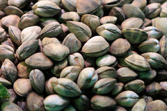 Pistachios on market Royalty Free Stock Image