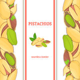 Pistachios nut vertical seamless border. Vector illustration with composition of a delicious pistacia nut fruit in the shell whole Stock Images