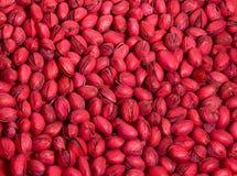 Pistachios vermelhos Fotos de Stock