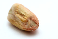 pistacja Fotografia Stock