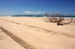 pistas 4WD en la playa Fotografía de archivo libre de regalías