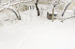 Pistas animales en nieve Imagen de archivo libre de regalías