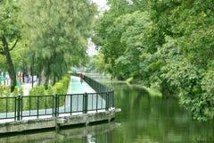 Pistas da bicicleta na árvore verde dos parques imagem de stock