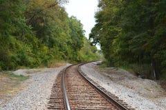 Pistas de ferrocarril curvadas en bosque Imagen de archivo