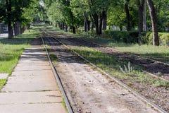 Pistas de ferrocarril en el área enorme del bosque del destino de la ciudad Imagenes de archivo