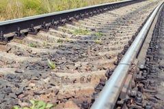 Pistas de ferrocarril en el primer de la luz del sol Imagenes de archivo