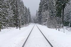 Pistas de ferrocarril en invierno Fotografía de archivo libre de regalías