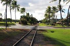 Pistas de ferrocarril entre las palmeras Imágenes de archivo libres de regalías