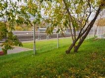 Pistas de ferrocarril más allá del césped verde con los árboles Imagen de archivo libre de regalías