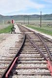 Pistas de ferrocarril que se combinan en el interruptor foto de archivo libre de regalías