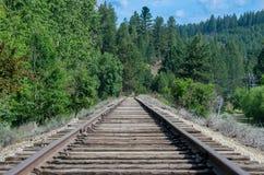 Pistas de ferrocarril silenciosas que extienden encendido y que esperan pacientemente fotografía de archivo