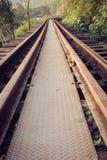 Pistas de ferrocarril a través de un bosque y de un campo, Tailandia Fotos de archivo
