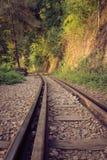 Pistas de ferrocarril a través de un bosque y de un campo, Tailandia Imagenes de archivo