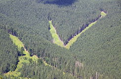 Pistas de la estación de esquí de Bukovel en verano, montañas cárpatas Imagen de archivo libre de regalías