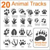 Pistas de los animales - sistema del vector Foto de archivo libre de regalías