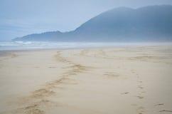 Pistas del caballo en la playa Fotos de archivo libres de regalías