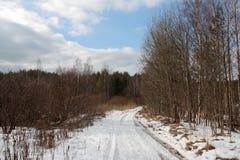 Pistas del coche en el camino del invierno en bosque Imagenes de archivo