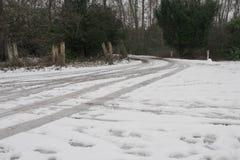 Pistas del coche en nieve en un carril/un camino sucios del país, a través del bosque imágenes de archivo libres de regalías