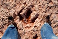 Pistas del dinosaurio fotografía de archivo libre de regalías