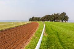 Pistas del entrenamiento del caballo de raza Fotografía de archivo libre de regalías